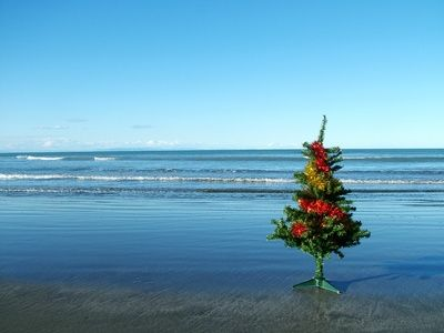 article-new_ehow_images_a07_b1_p1_christmas-myrtle-beach-south-carolina-1.1-800x800