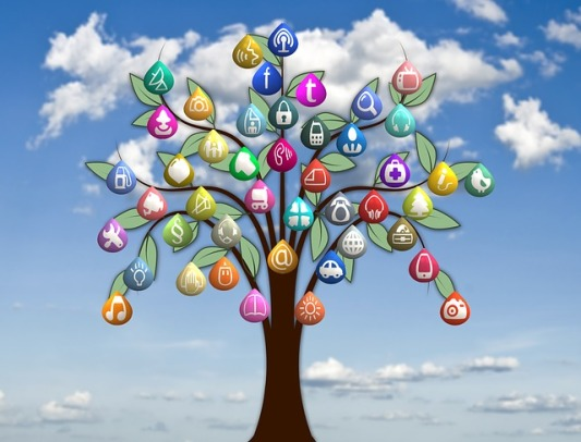 tree-240470_640